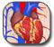 النوبة القلبية - Heart Attack